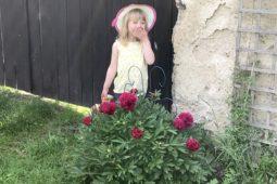 Rok na gruntu (11) – léto 3